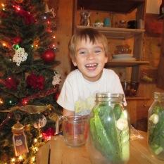 Pickling cucumbers