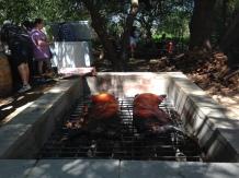 Singh's Farmers Market & Gardens (Two pigs roasting)