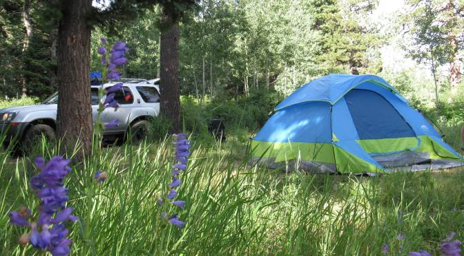 camping Durango Colorado